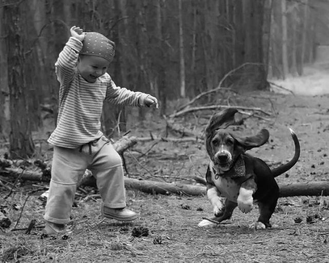 Teach your kids to love and take care of their pets
